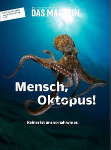 """At your news kiosk now – if you are in Germany, Das Magazin. On the cover: """"Man, octopus - there is none so close to us"""" – or so says Google Translate."""