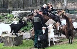 Donna, Sy & Some goats